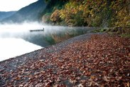 Fairholm Fall - Lake Crescent