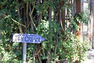 Lavender ice cream this way!