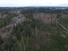 Aerial View of the 320 acres