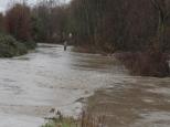 Flooding 2010