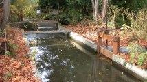 Large irrigation ditch